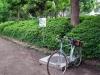 Photo_20200511211202